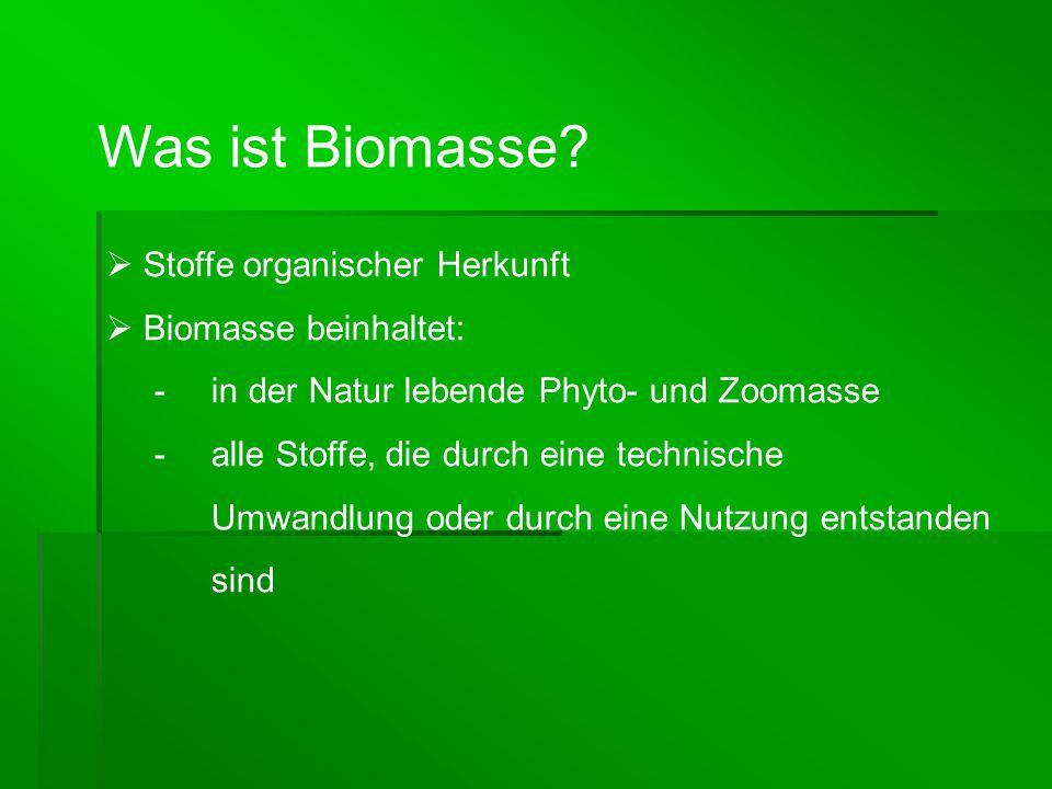 Was ist Biomasse Stoffe organischer Herkunft Biomasse beinhaltet: