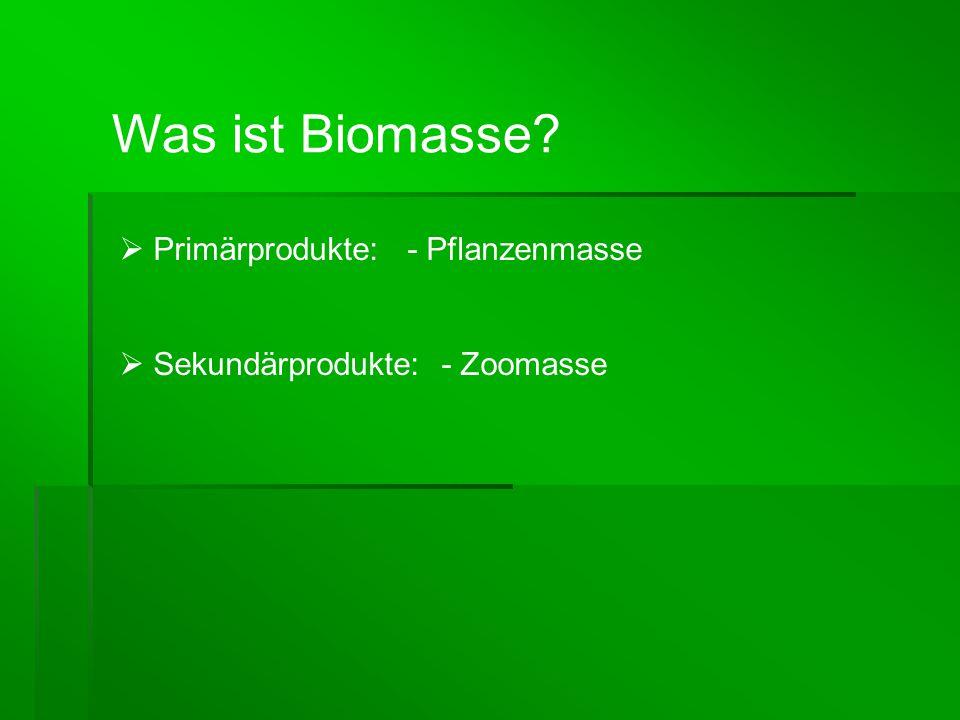 Was ist Biomasse Primärprodukte: - Pflanzenmasse