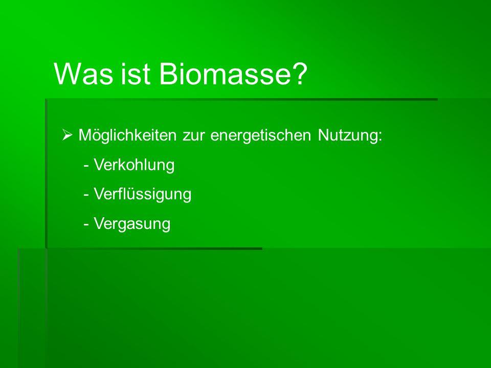 Was ist Biomasse Möglichkeiten zur energetischen Nutzung: