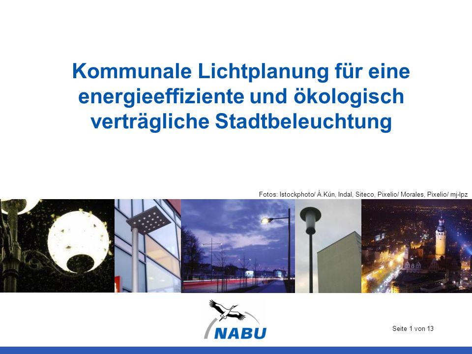 Kommunale Lichtplanung für eine energieeffiziente und ökologisch verträgliche Stadtbeleuchtung