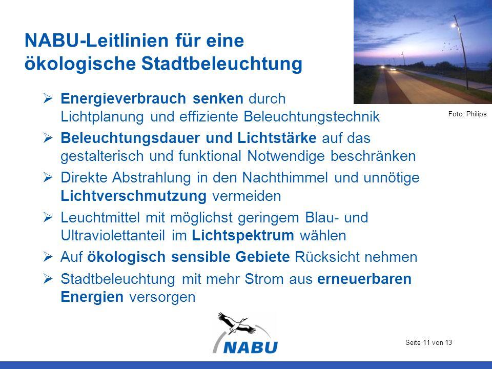 NABU-Leitlinien für eine ökologische Stadtbeleuchtung