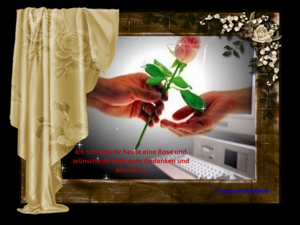 Ich schenke dir heute eine Rose und wünsche dir viele gute Gedanken und Momente