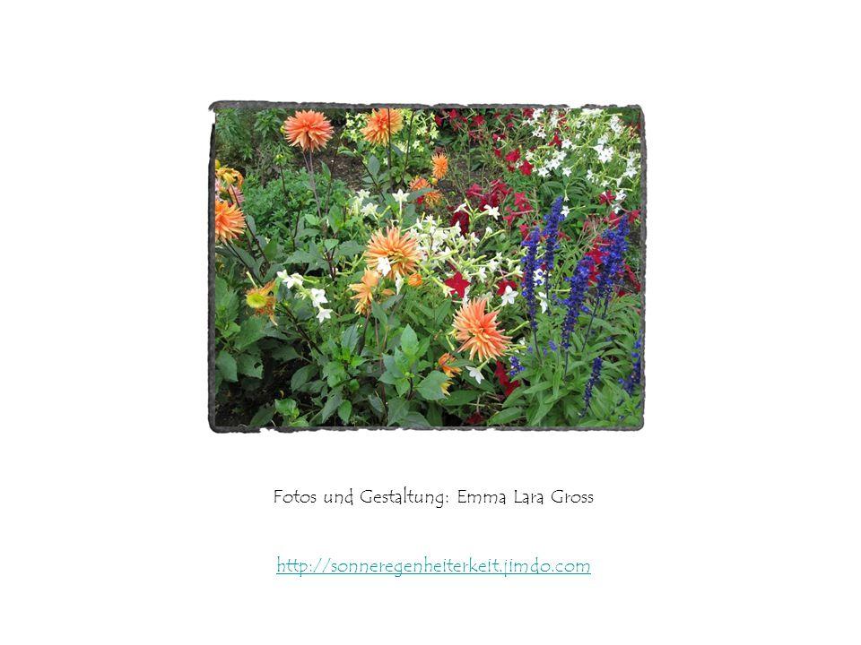Fotos und Gestaltung: Emma Lara Gross http://sonneregenheiterkeit