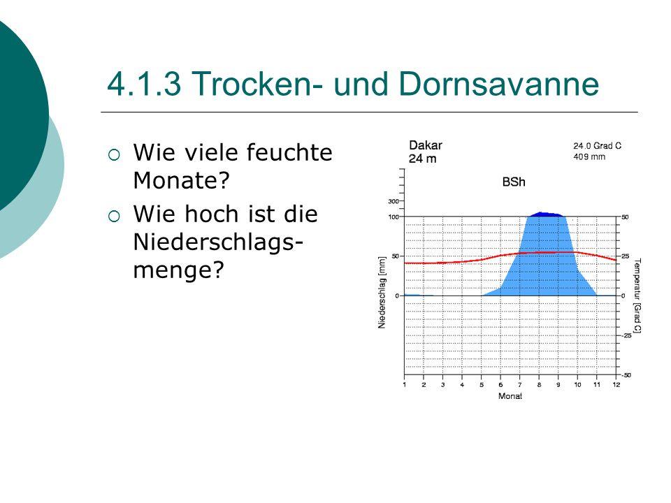 4.1.3 Trocken- und Dornsavanne