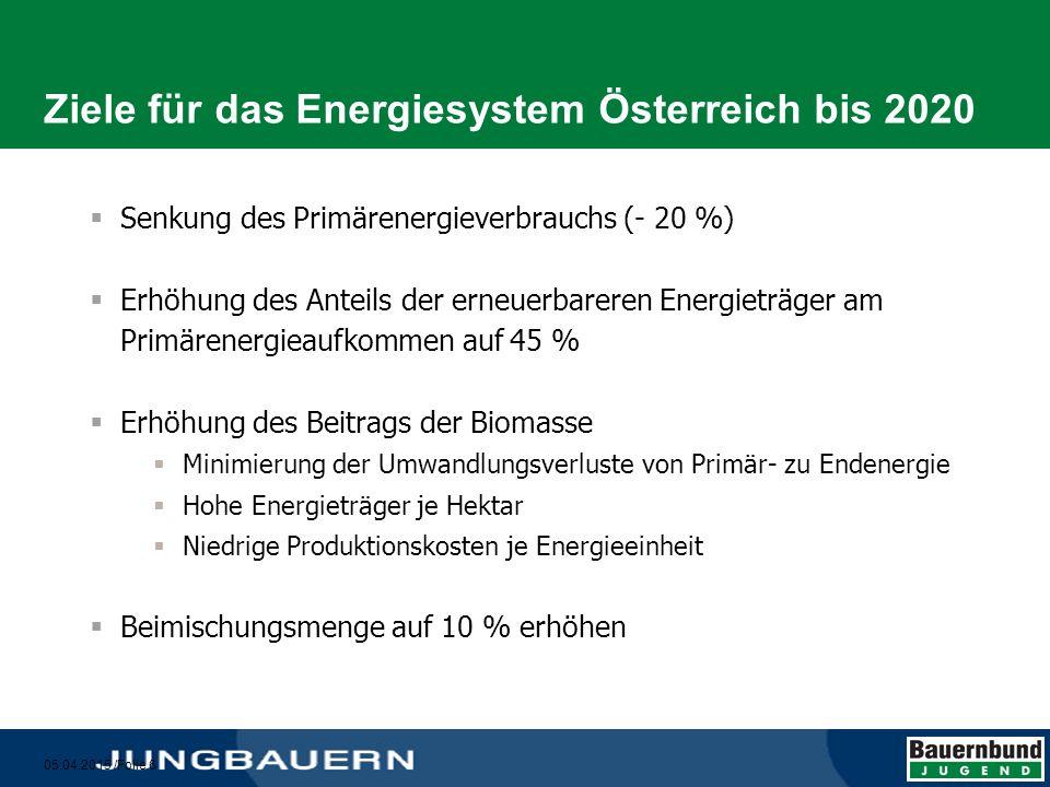 Ziele für das Energiesystem Österreich bis 2020