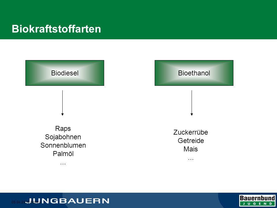 Biokraftstoffarten Biodiesel Bioethanol Raps Sojabohnen Sonnenblumen