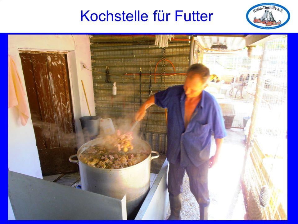Kochstelle für Futter Kochstelle für Futter