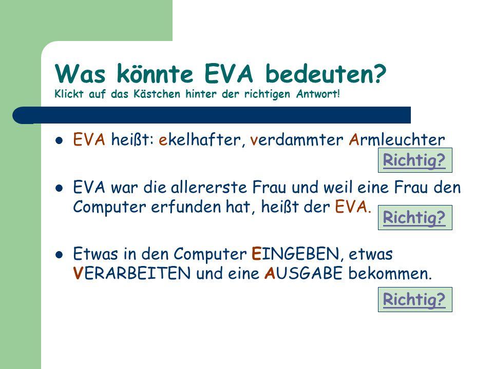 Was könnte EVA bedeuten