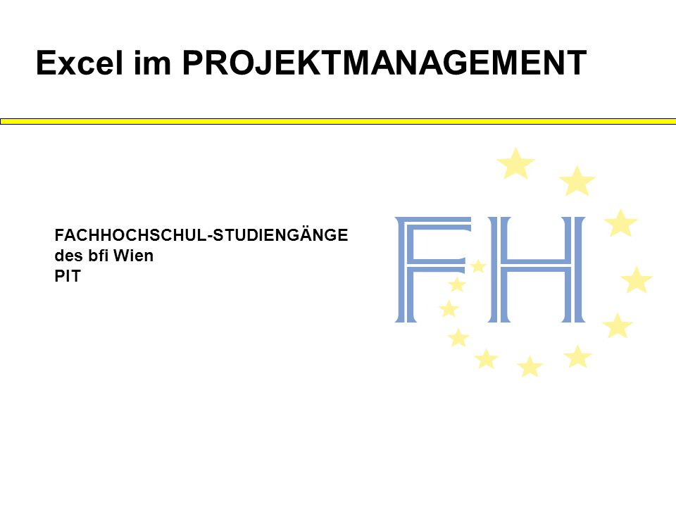 Excel im PROJEKTMANAGEMENT