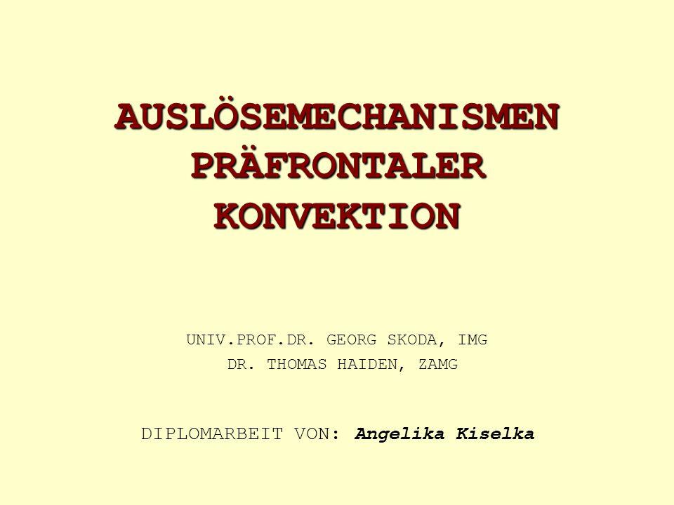 AUSLÖSEMECHANISMEN PRÄFRONTALER KONVEKTION