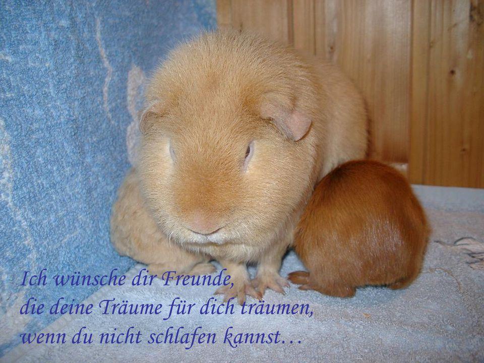 Ich wünsche dir Freunde, die deine Träume für dich träumen, wenn du nicht schlafen kannst…