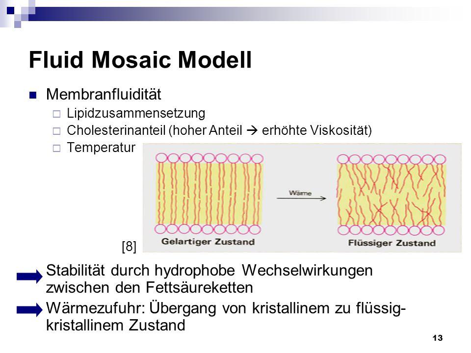 Fluid Mosaic Modell Membranfluidität