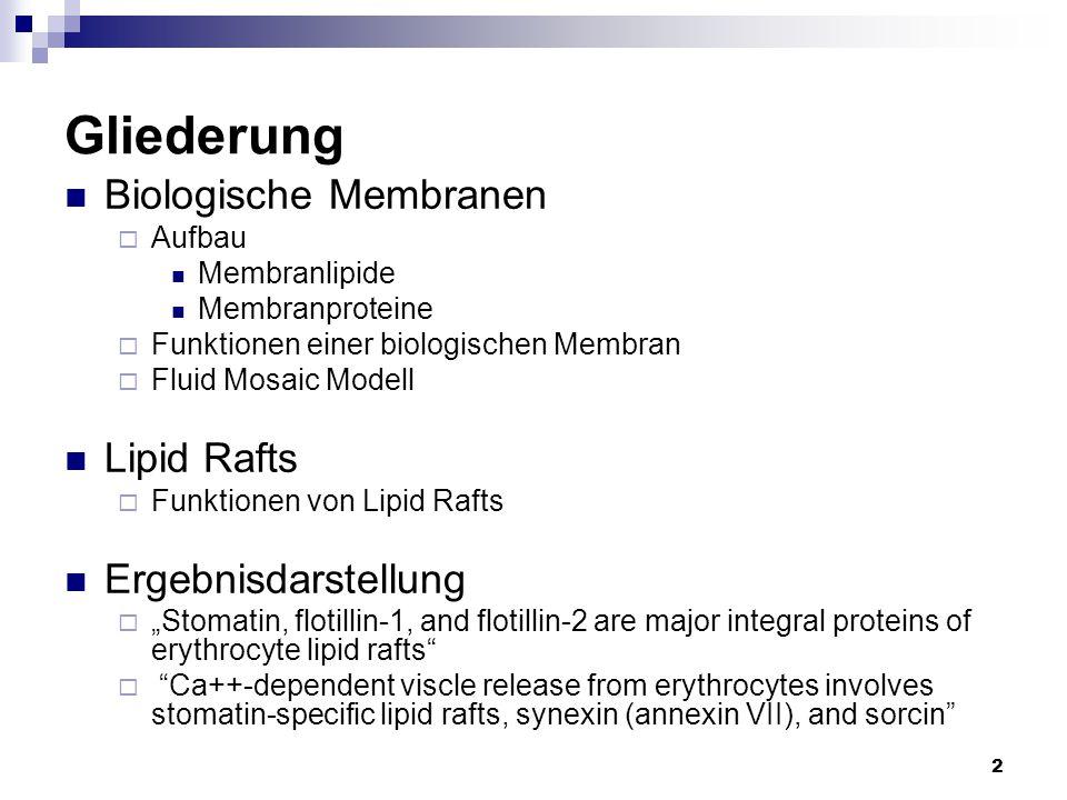 Gliederung Biologische Membranen Lipid Rafts Ergebnisdarstellung