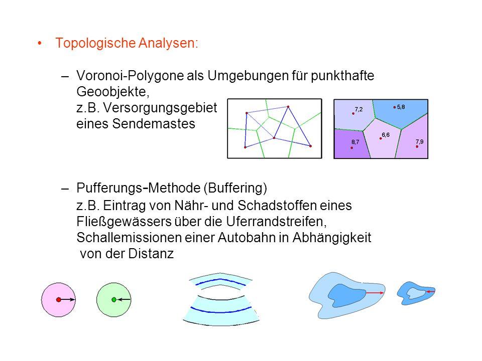 Topologische Analysen: