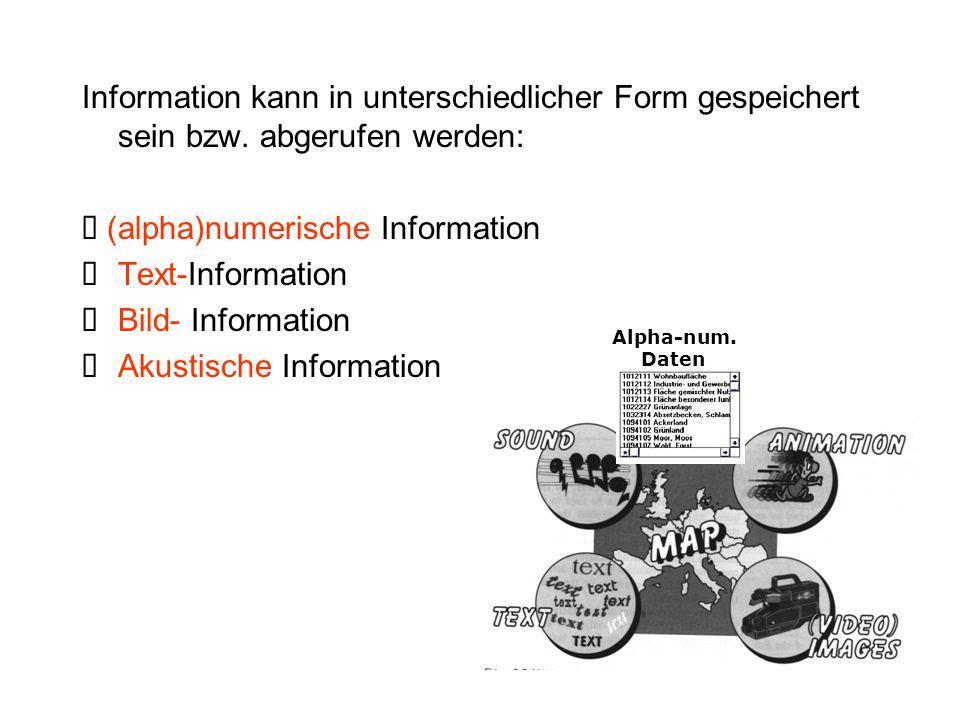 Ø (alpha)numerische Information Ø Text-Information Ø Bild- Information