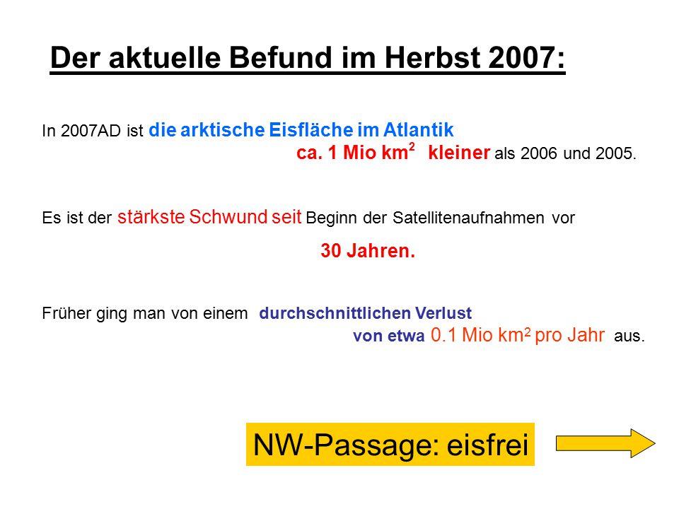 Der aktuelle Befund im Herbst 2007: