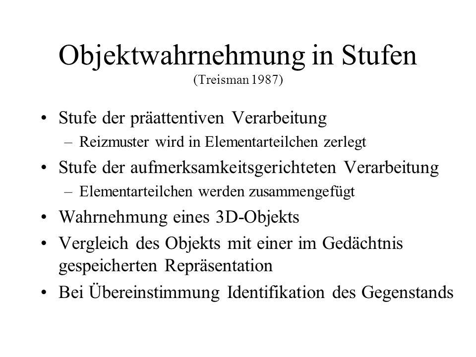 Objektwahrnehmung in Stufen (Treisman 1987)