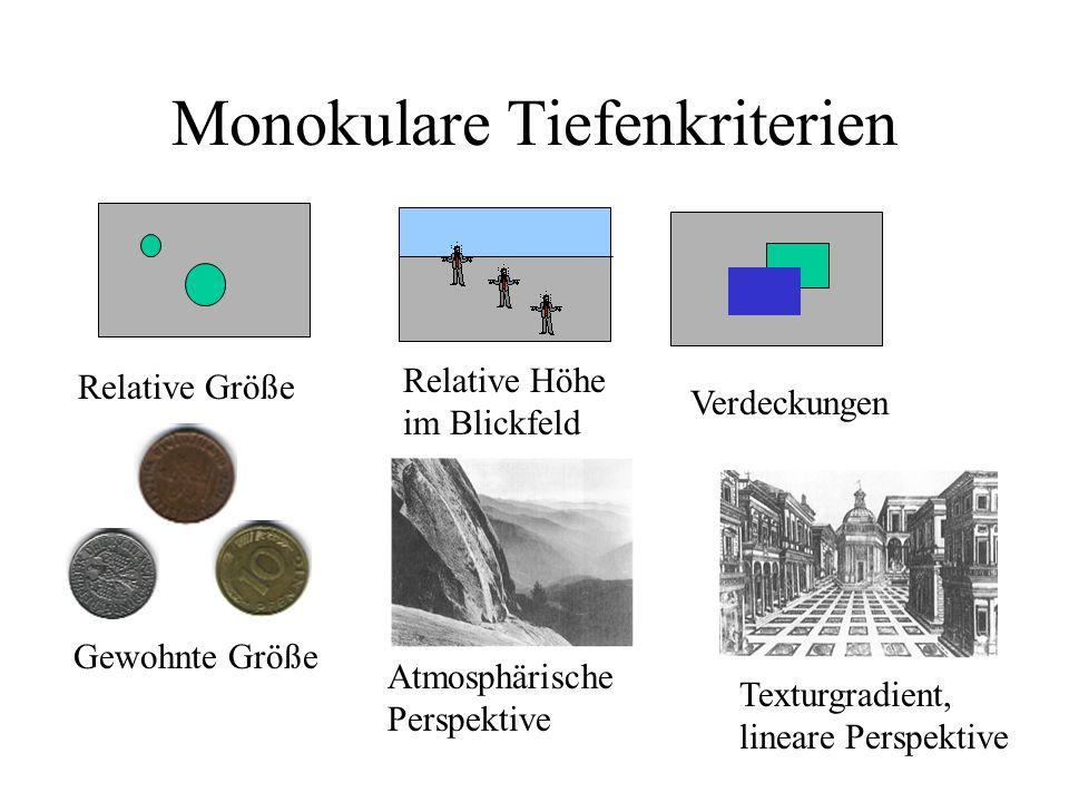 Monokulare Tiefenkriterien