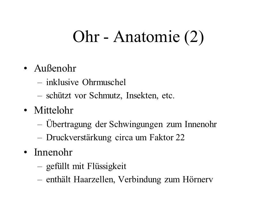 Ohr - Anatomie (2) Außenohr Mittelohr Innenohr inklusive Ohrmuschel