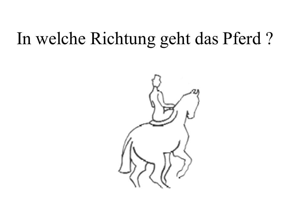 In welche Richtung geht das Pferd