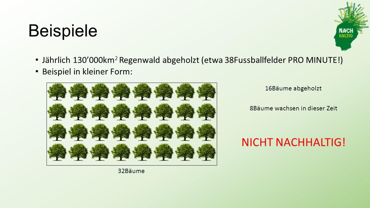 8Bäume wachsen in dieser Zeit
