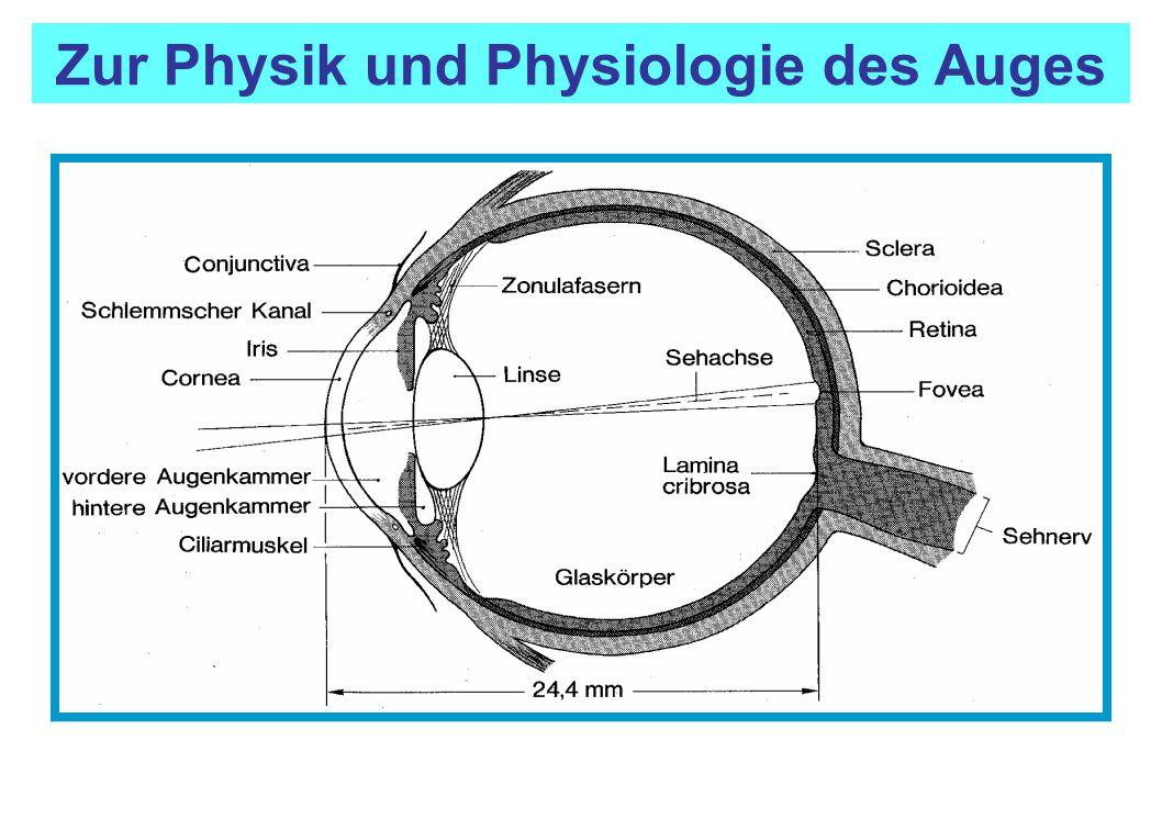 Zur Physik und Physiologie des Auges