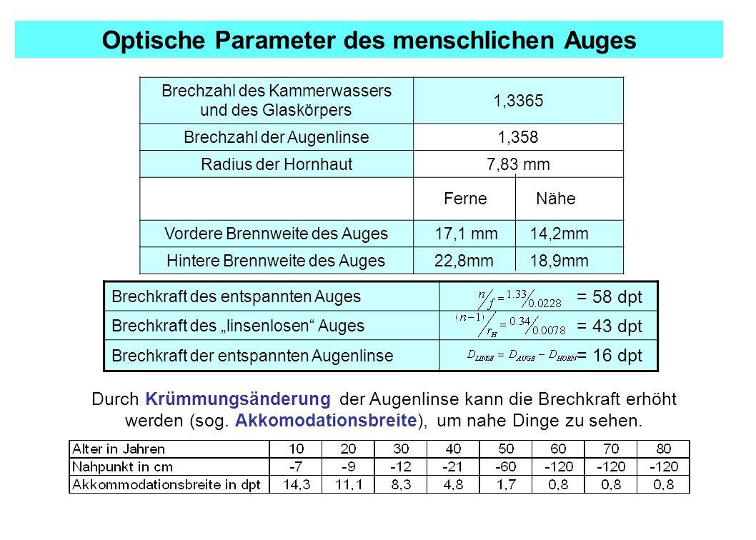 Optische Parameter des menschlichen Auges