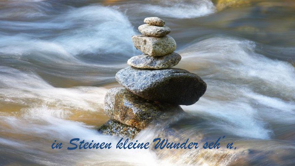 in Steinen kleine Wunder seh´n,