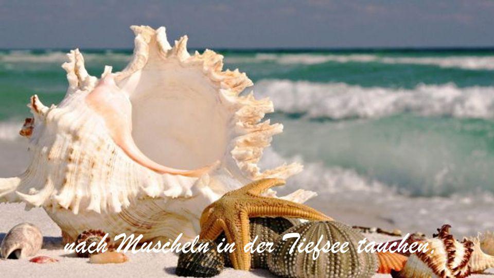nach Muscheln in der Tiefsee tauchen,