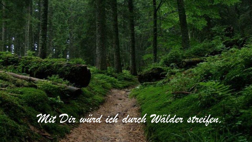 Mit Dir würd ich durch Wälder streifen,