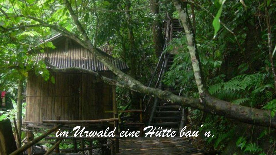 im Urwald eine Hütte bau´n,