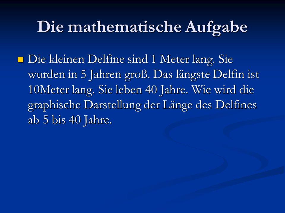 Die mathematische Aufgabe