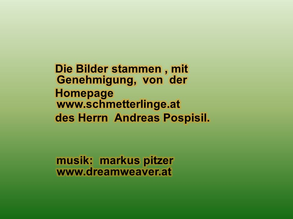 musik: markus pitzer www.dreamweaver.at