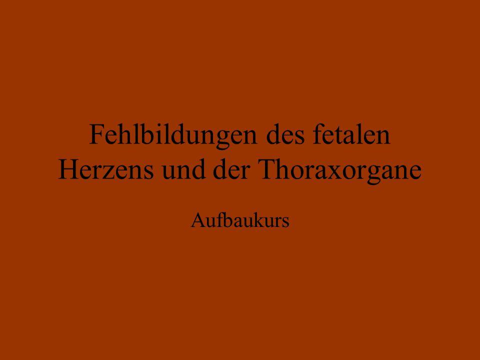 Fehlbildungen des fetalen Herzens und der Thoraxorgane