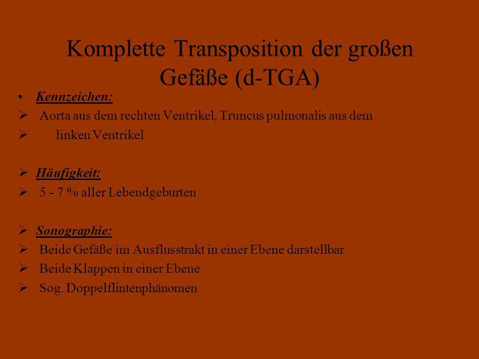 Komplette Transposition der großen Gefäße (d-TGA)
