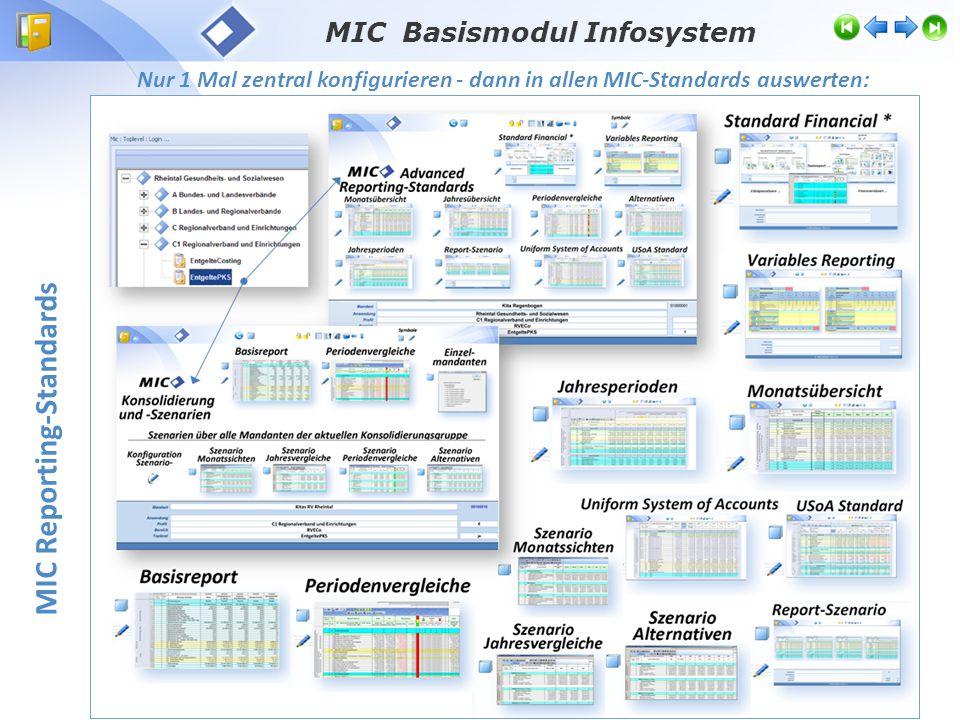 MIC Basismodul Infosystem