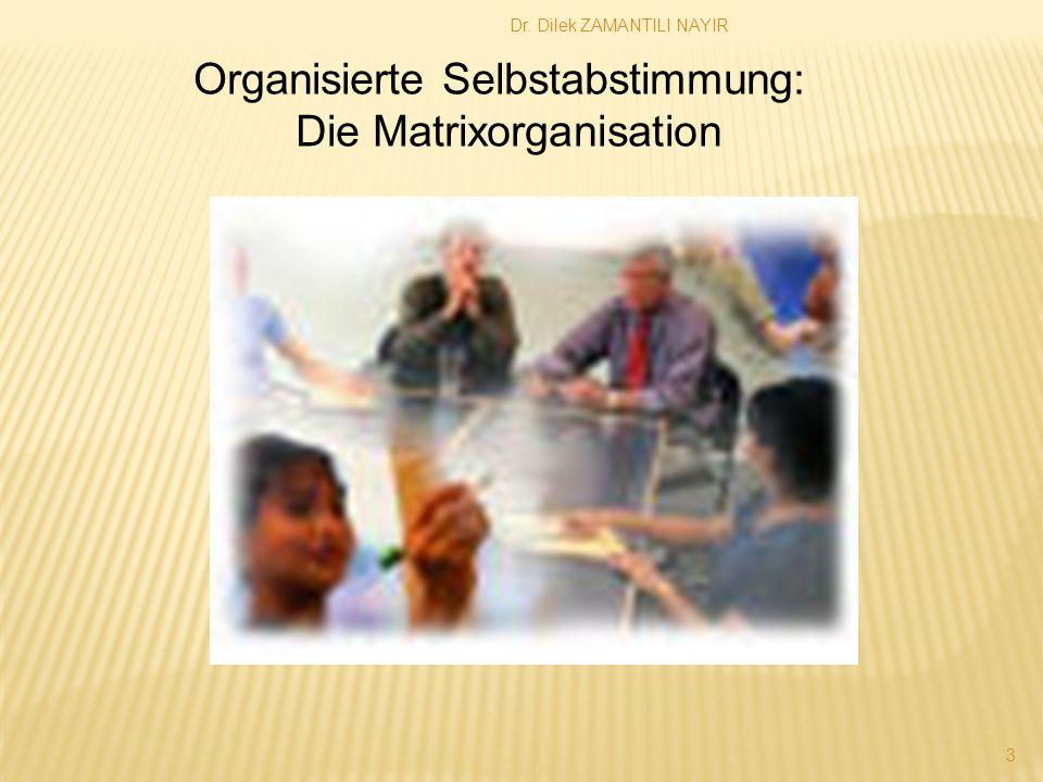 Organisierte Selbstabstimmung: Die Matrixorganisation