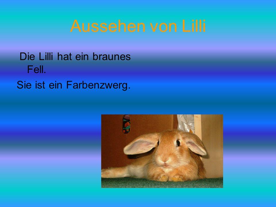 Aussehen von Lilli Die Lilli hat ein braunes Fell.