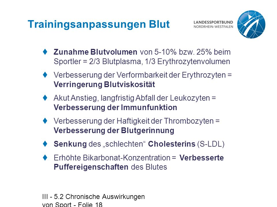 Trainingsanpassungen Blut