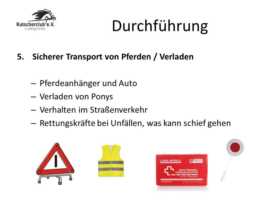 Durchführung 5. Sicherer Transport von Pferden / Verladen