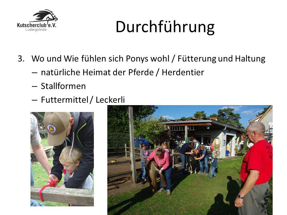 Durchführung 3. Wo und Wie fühlen sich Ponys wohl / Fütterung und Haltung. natürliche Heimat der Pferde / Herdentier.