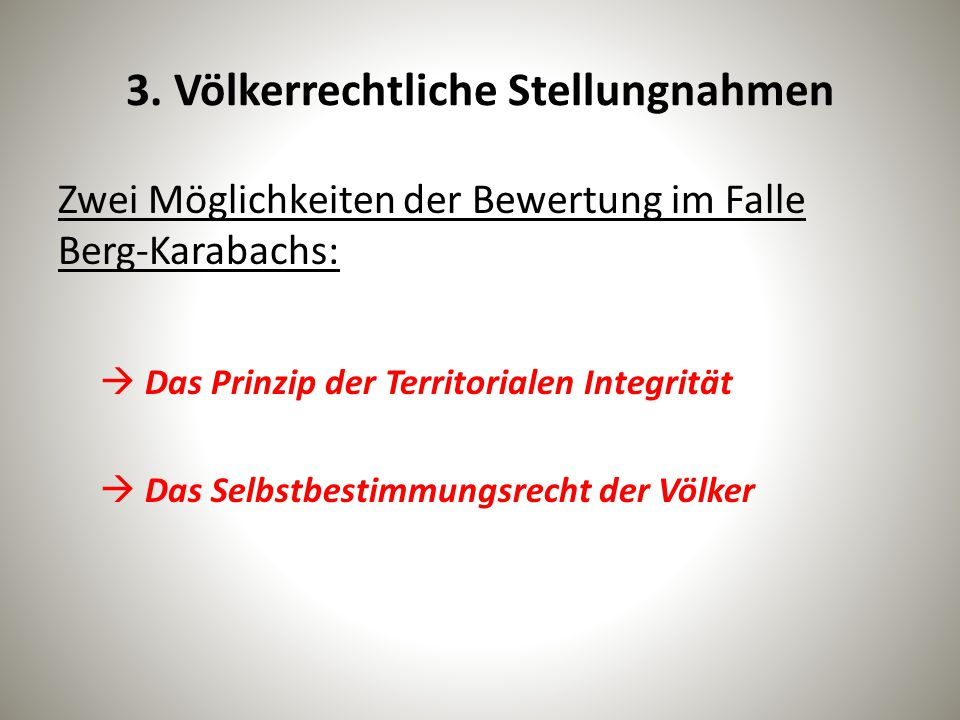3. Völkerrechtliche Stellungnahmen