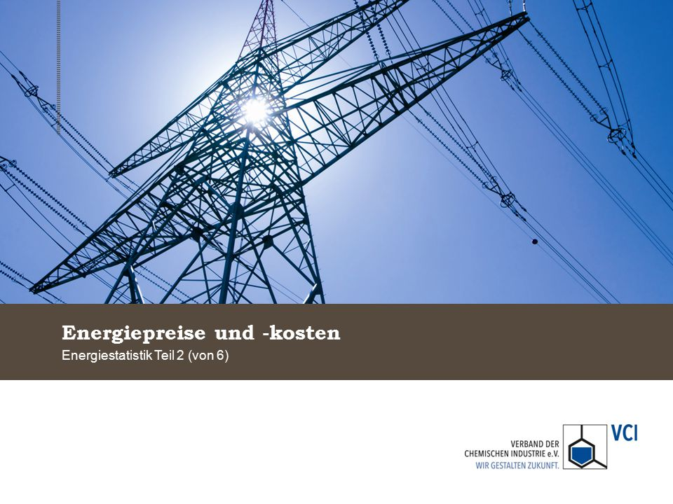 Energiepreise und -kosten