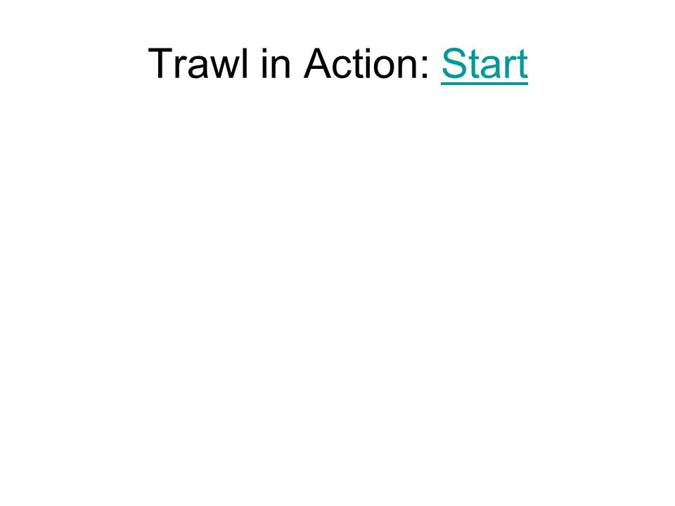 Trawl in Action: Start