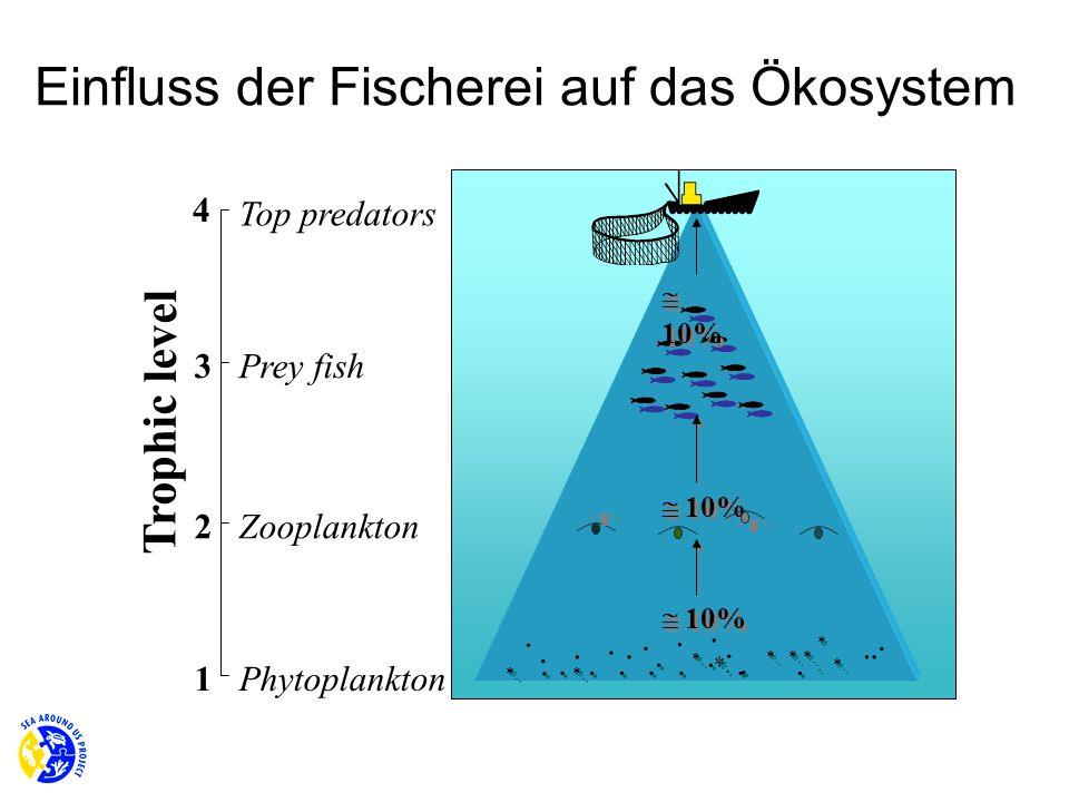 Einfluss der Fischerei auf das Ökosystem
