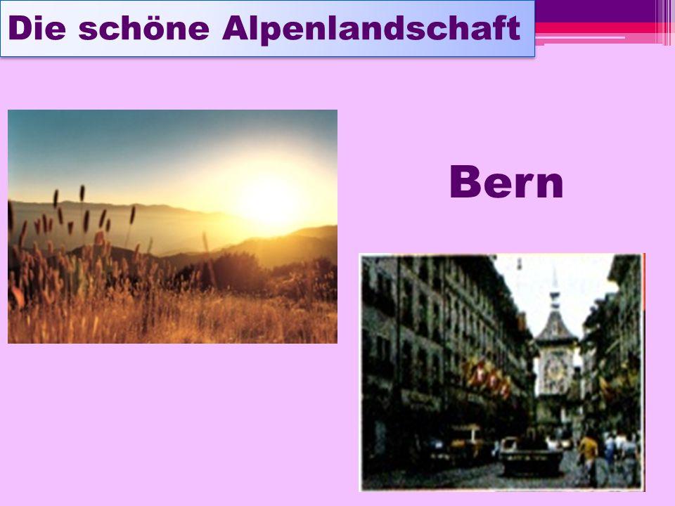 Die schöne Alpenlandschaft