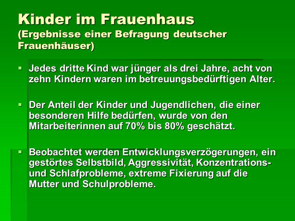 Kinder im Frauenhaus (Ergebnisse einer Befragung deutscher Frauenhäuser)