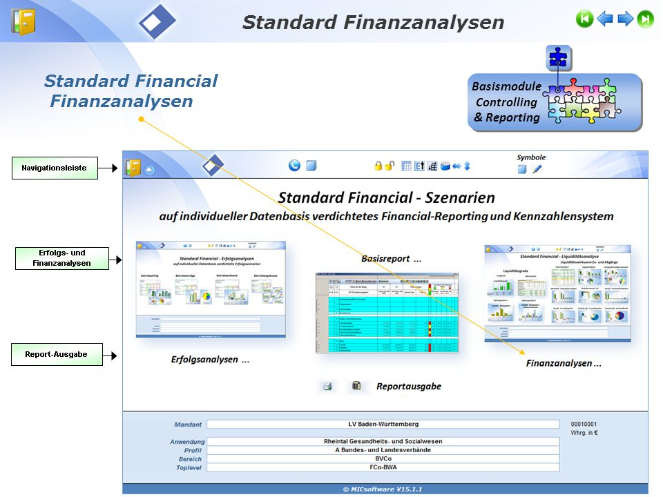 Standard Finanzanalysen Basismodule Controlling