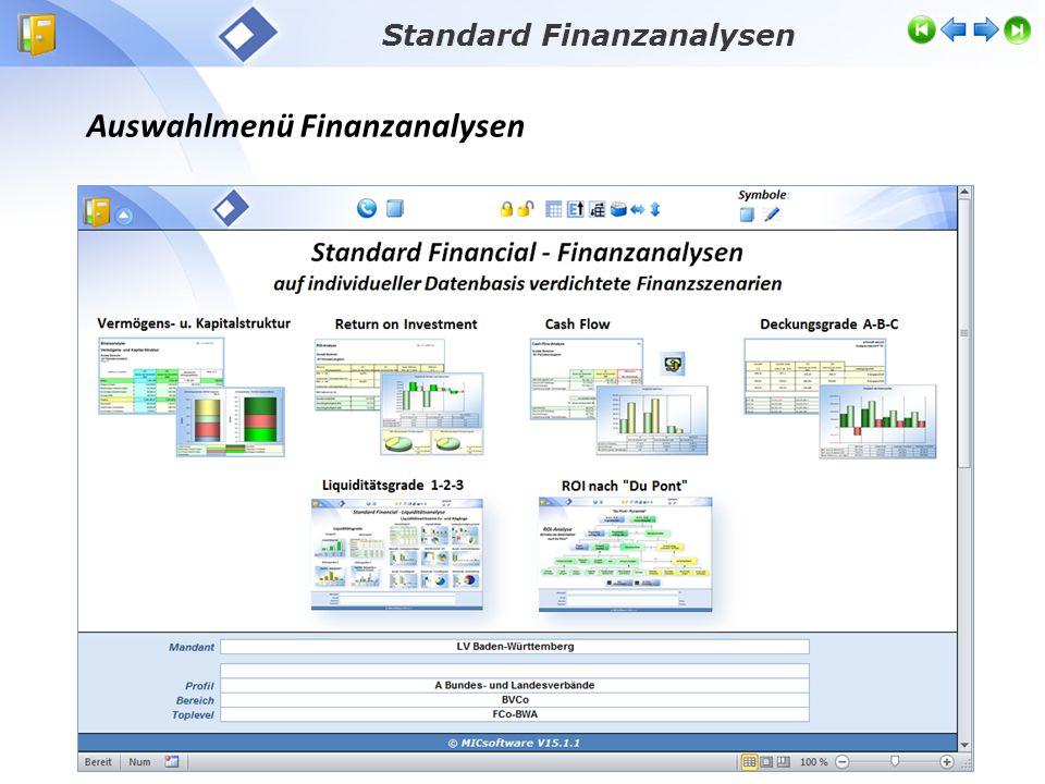 Standard Finanzanalysen