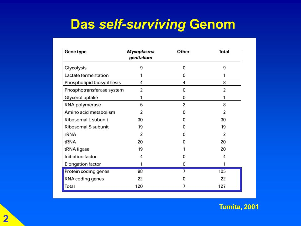 Das self-surviving Genom
